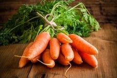 Groupe organique frais de carottes sur le fond en bois photos stock