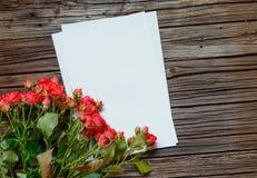 Groupe ou roses rouges fraîches pour le jour de valentines Photographie stock libre de droits