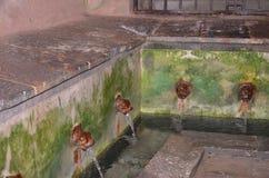 Groupe pittoresque de lavabos du 16ème siècle dans Cefalu Photo libre de droits