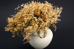 Groupe sec de roses Image stock