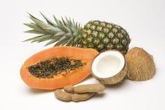 Groupe tiré des fruits tropicaux Images stock