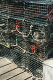 Groupe, trappes de langoustine Photos stock