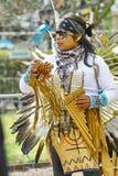 Groupe tribal indien indigène Image stock