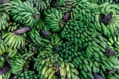 groupe vert de banane photo libre de droits