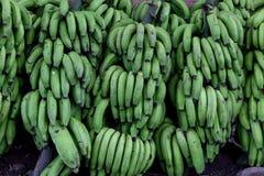 Groupe vert de banane sur le marché photos libres de droits