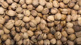 Grouped walnuts. Royalty Free Stock Photos