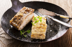 Grouper Fillet Fried in a Pan. Grouper fillet fried as closeup in a pan Stock Image