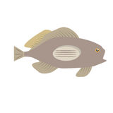 Grouper fish side view sea life. Illustration eps 10 Royalty Free Stock Image