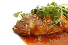 Grouper Fish With Tomato Sauce Royalty Free Stock Photography