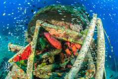 Grouper and glassfish around underwater wreckage Royalty Free Stock Images