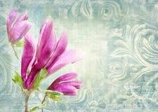 Groupes architecturaux Mur antique dans le style grunge avec le méandre, les capitaux, les frises et la magnolia de fleur Photographie stock