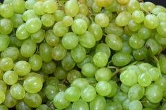 Groupes avec des raisins verts Images libres de droits