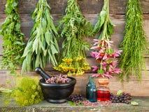 Groupes d'herbes curatives sur le mur en bois, mortier avec l'usine sèche Photographie stock
