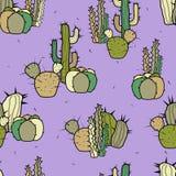 Groupes de différents types de cactus stylisés décoratifs sur un fond pourpre illustration stock