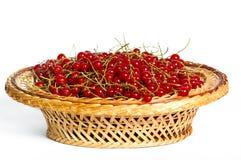 Groupes de groseilles rouges dans un panier Photo stock