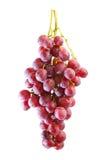 Groupes de raisin rouge frais d'été photos stock