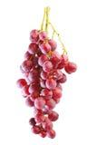Groupes de raisin rouge frais d'été photos libres de droits