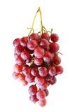 Groupes de raisin rouge frais d'été photo stock