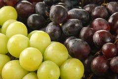 Groupes de raisins Photos stock
