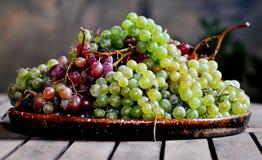 Groupes de raisins Photographie stock