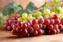 Groupes de raisins rouges et verts Image libre de droits