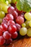 Groupes de raisins rouges et verts Photo libre de droits