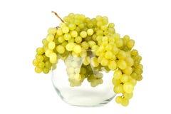 Groupes de raisins verts dans le vase rond en verre sur le fond blanc de miroir avec des baisses de réflexion et d'eau d'isolemen photos stock