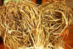 Groupes de tiges sèches d'ail Image stock