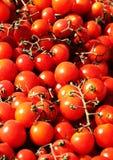 Groupes de tomates-cerises fraîches Photo stock