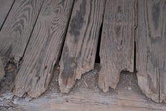 Groupes en bois Photos libres de droits