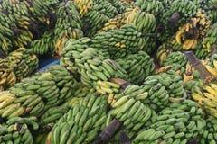 Groupes verts et jaunes de banane images libres de droits