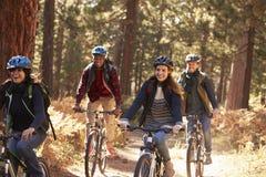 Groupez les amis dans les casques montant des vélos dans une forêt, fermez-vous  Image stock