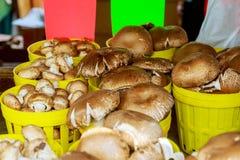 Groupez les champignons dans des caisses en bois sur le marché, Image stock