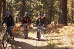 Groupez quatre amis dans les casques montant des vélos sur un chemin forestier Photos stock