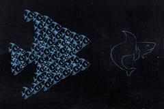 Groupf малых рыб гоня и пугая акулу совместно бесплатная иллюстрация