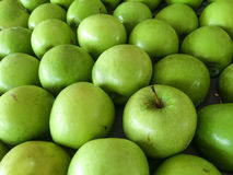 Grouping of green apples Royalty Free Stock Images