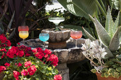 Grouping of Margarita glasses and drink Royalty Free Stock Photos