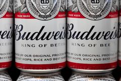 Free Grouping Of Budwieiser Beer Cans And Trademark Logo Stock Photography - 139642732