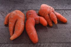 Grouping ugly carrots on wooden board royalty free stock images