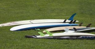 Grouping of various surfboards laying on the grass at a coastal Royalty Free Stock Photography