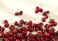 Groups of cherries on a white background in sunny light Royalty Free Stock Images