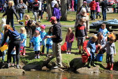Groups of people helping release fish into water,Saratoga State Park,New York,2016. Groups of people, both adults and children, helping release fish during an stock photo