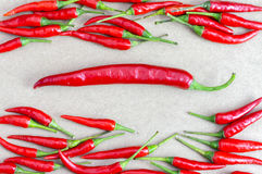Groups of red chilli. Royalty Free Stock Photography