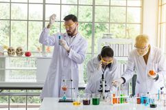 Group of scientist working putting medical chemicals sample in test tube at laboratory together royalty free stock photography