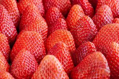 Groups of Strawberries shot close up macro depth of field. Details royalty free stock photography