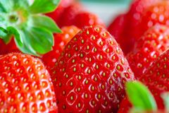 Groups of Strawberries shot close up macro depth of field green leaf. In the background royalty free stock images