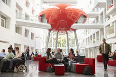 Groups of students meet in the lobby of their university royalty free stock photos
