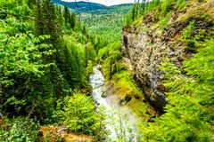 Grouse Creek in Wells Gray Provincial Park, British Columbia, Can Stock Image