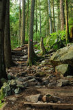Grouse grind hiking trail royalty free stock image