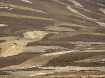 Grouse moorland Stock Image